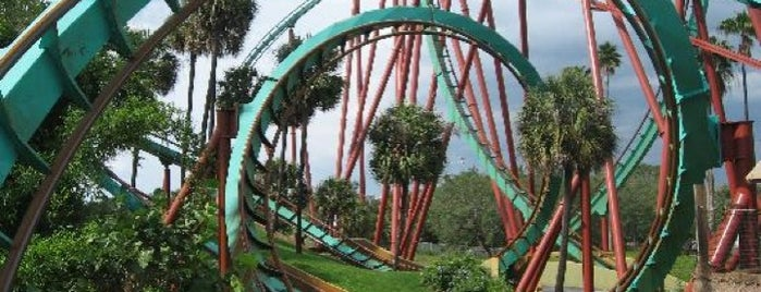 Busch Gardens Tampa Bay is one of Austin.