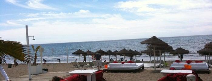 Bono's Beach Marbella is one of Peddi 님이 좋아한 장소.
