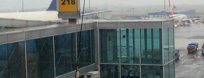 Gate 218 is one of Gespeicherte Orte von Büşra.