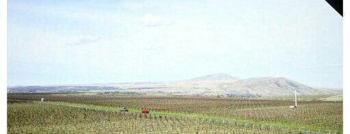 Kiona Vineyards Winery is one of Wine Trip: Washington (2nd US wine country).