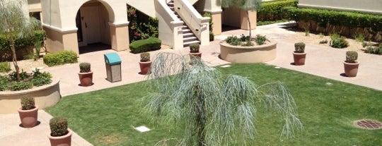 Legacy Golf Resort is one of Scottsdale.