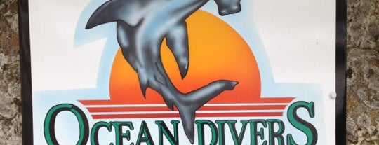 Ocean Divers is one of USA Key West.