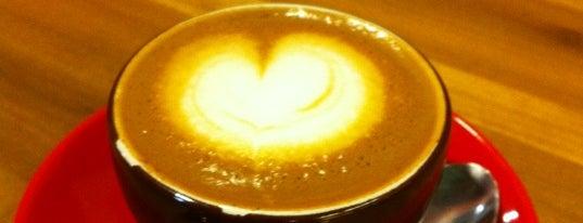 Rata's Seattle Coffee Trip - A Coffee Crawl!