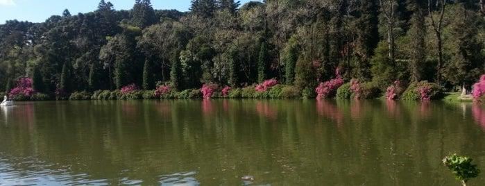 Lago Negro is one of LUGARES... Rio Grande do Sul/BRASIL.