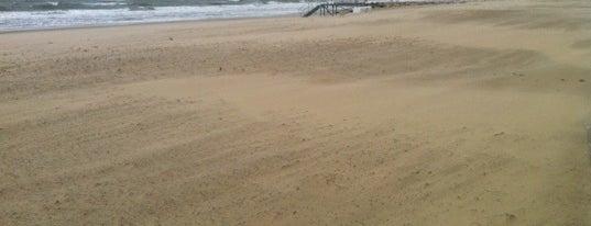 Branksome Dene Chine Beach is one of The UK's Best Sandy Beaches.
