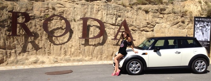Bodegas Roda is one of North Spain.