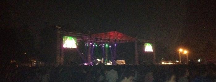 YTU Fest 12 is one of สถานที่ที่ Caner ถูกใจ.