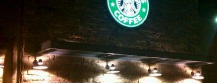 Starbucks is one of Terri : понравившиеся места.