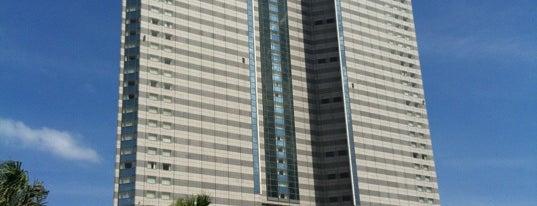 Sheraton Grande Ocean Resort is one of The vest hotel.