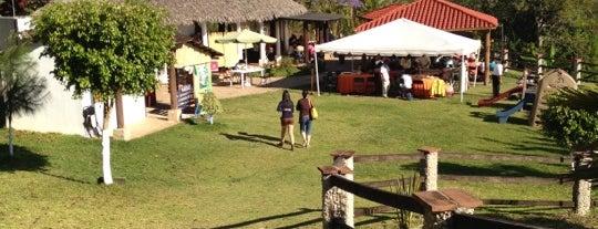 Selva Maya is one of Locais curtidos por Lore.