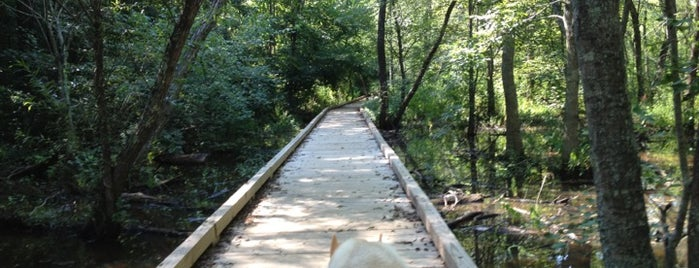 Chattahoochee Nature Trails & Park is one of Posti salvati di Carl.