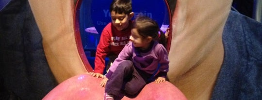 Children's Museum of Manhattan (CMOM) is one of Things For Kids To Do In NYC.