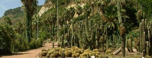 Jardins de Mossèn Costa i Llobera is one of Parks in Barcelona.