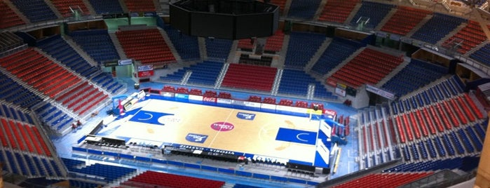 Pabellón Fernando Buesa Arena is one of Pabellones de baloncesto.