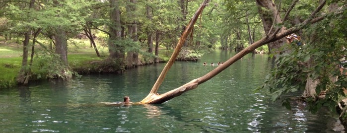 Wimberley Blue Hole Regional Park is one of Hill Country.
