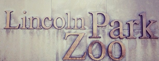 Lincoln Park Zoo is one of Chicago To-Do.