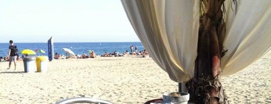 Relevant is one of Chiringuitos de Barcelona.