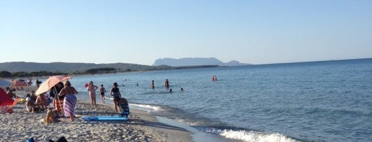 Budoni Beach is one of Sardinia.
