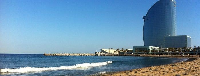 Praia de São Sebastião is one of Playas de Barcelona.