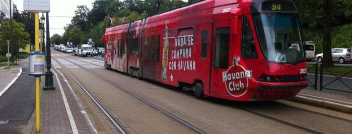 Hippodrome de Boitsfort / Renbaan van Bosvoorde (STIB / MIVB) is one of Belgium / Brussels / Tram / Line 8.