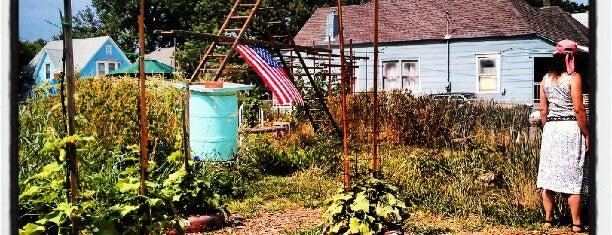 St. John Community Gardens is one of #UrbanGrown Farms & Gardens Tour.