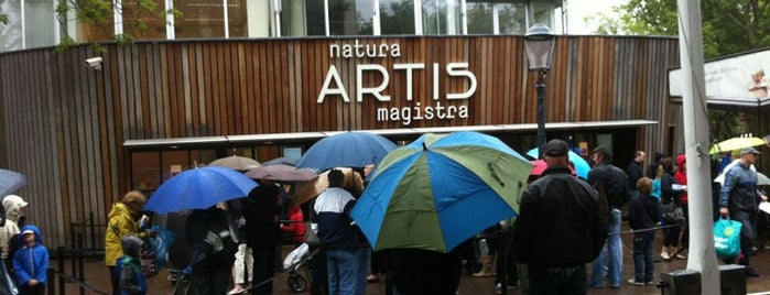 Natura Artis Magistra is one of Amsterdam.