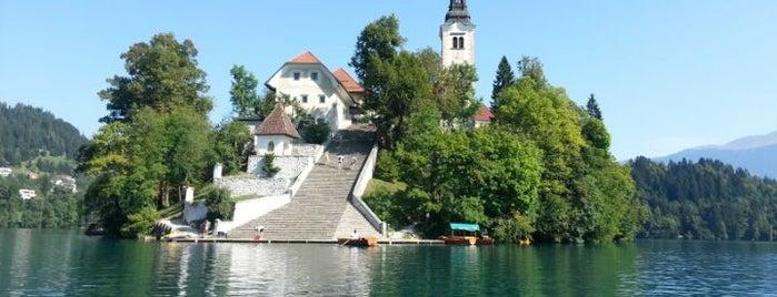 Blejski Otok (Bled Island) is one of Slovénie.