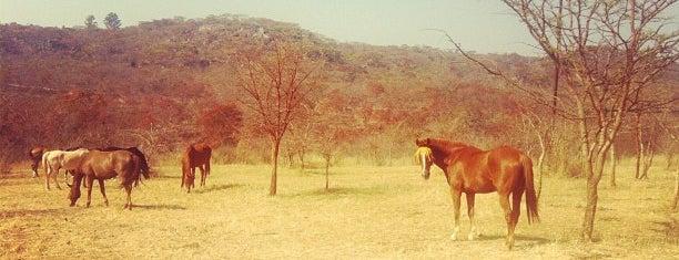 Bushman Rock Safaris is one of Locais curtidos por Els.