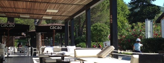 Cacao is one of Lieux qui ont plu à Virginie.