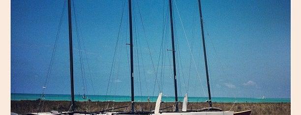 Siesta Key Beach Access #8 is one of Dana 님이 좋아한 장소.