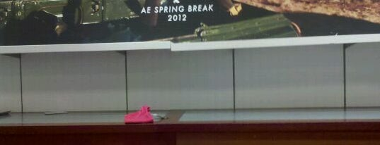 American Eagle Outfitters is one of Bervely hills.
