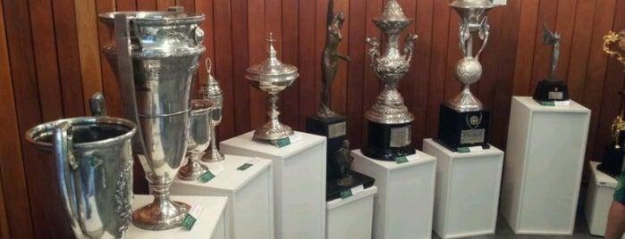 Memorial do Guarani Futebol Clube is one of Lieux qui ont plu à Hugo.