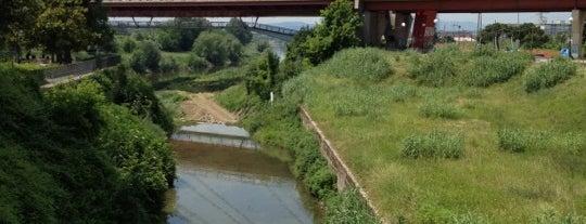 Ponte all'Indiano is one of Locais curtidos por Francesco.
