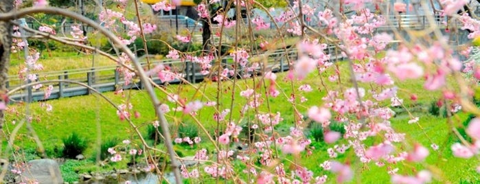 清水緑地 is one of FAVORITE PLACE.