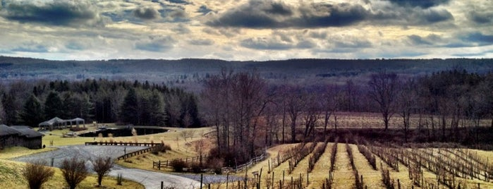 Six Mile Creek Vineyard is one of Fingerlakes Transport an Tour Service.