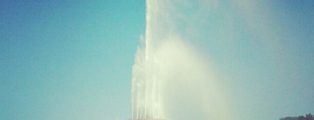 Clarence Buckingham Memorial Fountain is one of Things to do in Chicago.