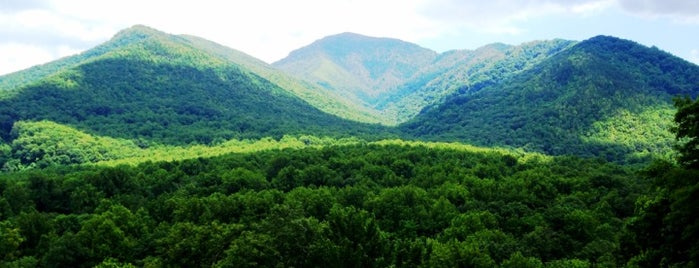 Great Smoky Mountains National Park is one of BB / Bucket List.