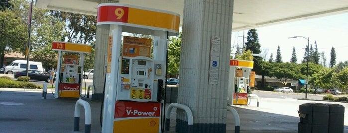 Shell is one of Posti che sono piaciuti a Michael.