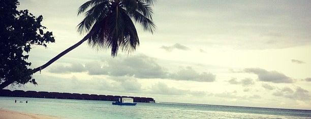 Meeru Island Resort & Spa is one of สถานที่ที่บันทึกไว้ของ Denis.