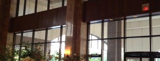 Omni San Antonio Hotel at the Colonnade is one of Tempat yang Disukai Tim.