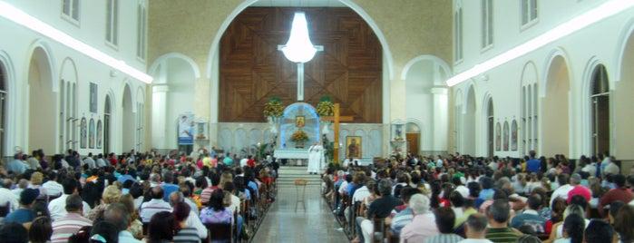 Igreja Matriz de Campinas is one of Marcos'un Beğendiği Mekanlar.