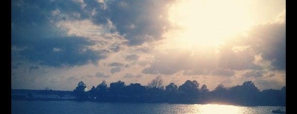 Lake LBJ is one of สถานที่ที่ Ron ถูกใจ.