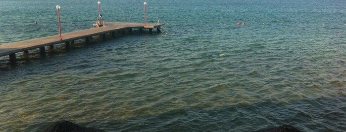 Gaye 2 Plajı is one of Gezdim gördüm.