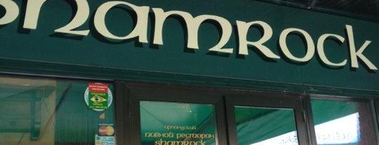 Shamrock Irish Pub is one of Novosibirsk TOP places.
