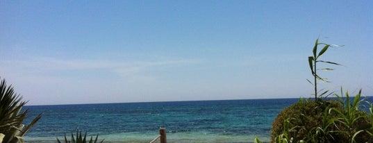 Hostal Sol i Mar is one of สถานที่ที่ Alfonso ถูกใจ.