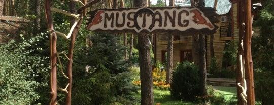Мустанг is one of Locais curtidos por Lenyla.