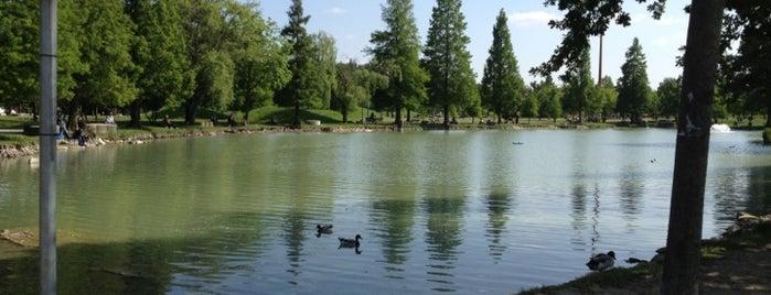 Parco Amendola is one of Orte, die Mariateresa gefallen.