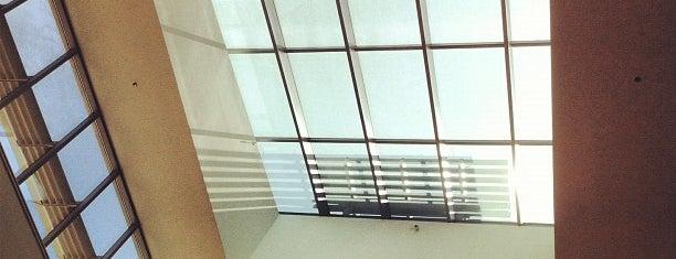 Duke University Women's Center is one of Orientation Week Locations.