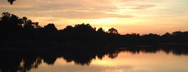 Prospect Park Lake is one of Guide to New York's best spots.