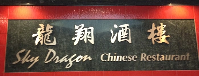 Sky Dragon Chinese Restaurant 龍翔酒樓 is one of Shannon 님이 저장한 장소.